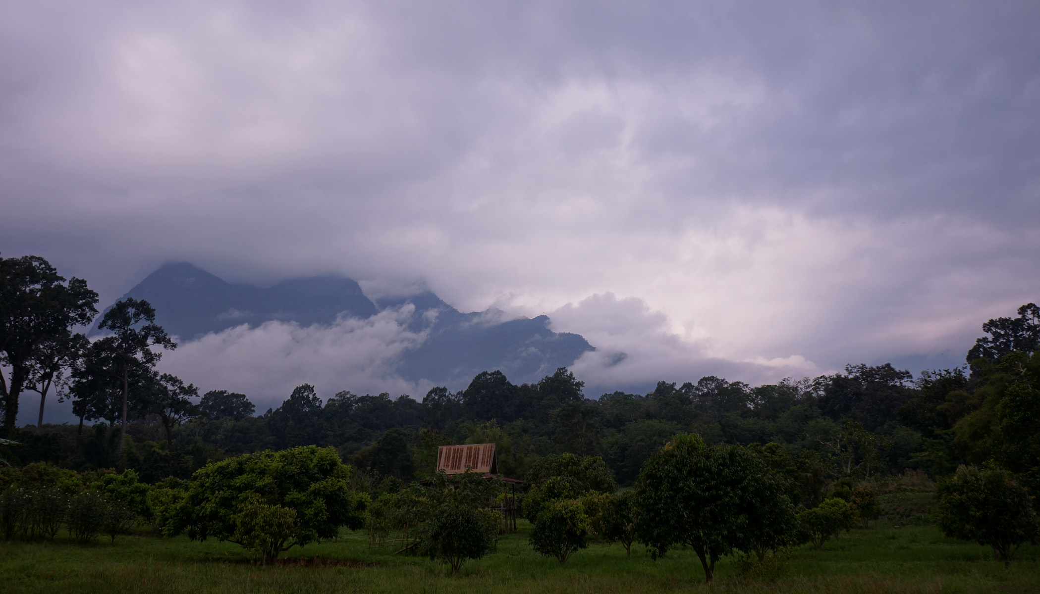Foggy mountain at Chiang Dao