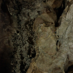Another shot of the twisted cave ceiling