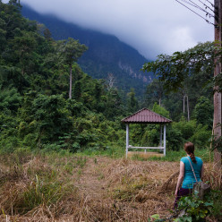Exploring a field at the foot of the foggy Chiang Dao mountains