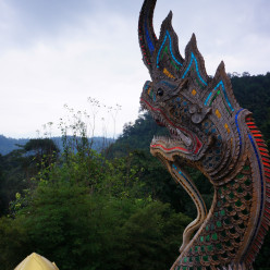 View from the top of the temple - the dragons guarding the stairs leading up