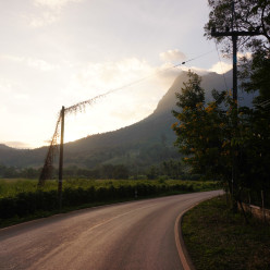 Taken from the back of the Songthaew leaving Chiang Dao