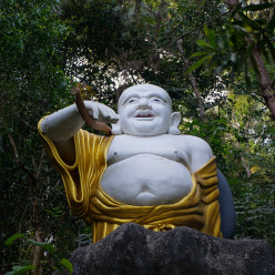 A Buddhist saint keeping watch in the woods