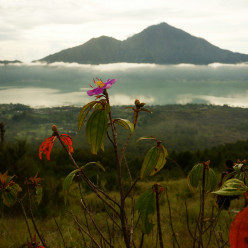 Mount Batur Sunrise-27