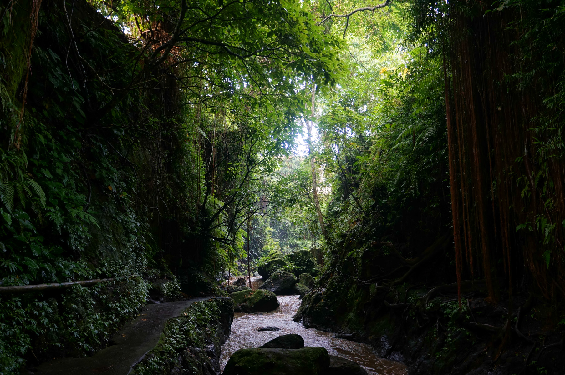 Sacred Monkey Forest-22
