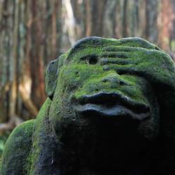 Sacred Monkey Forest-29