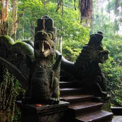 Sacred Monkey Forest-30