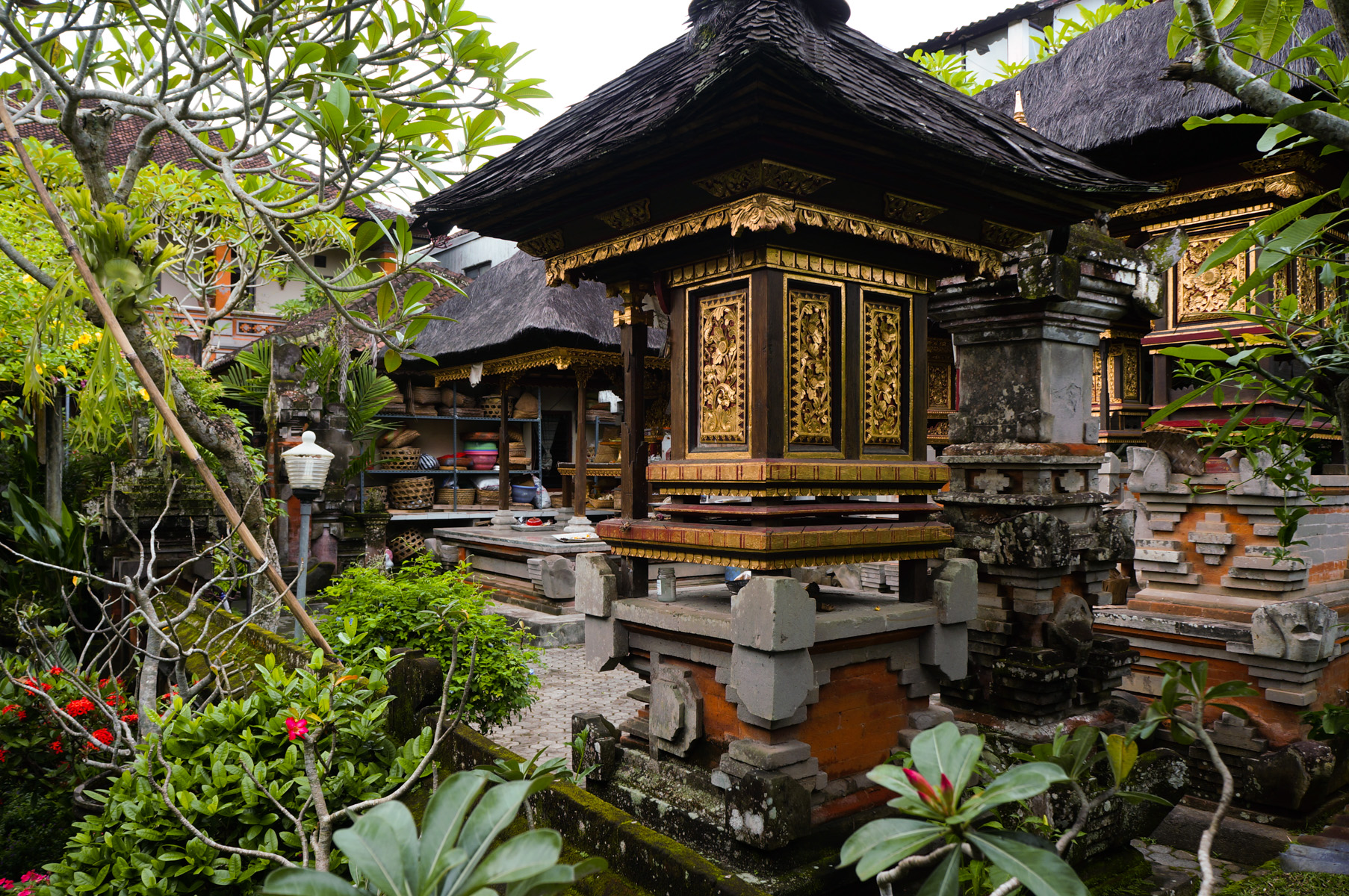ubud on foot and bali by bike jeff and jane. Black Bedroom Furniture Sets. Home Design Ideas