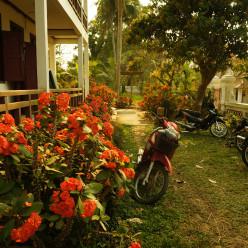 Luang Prabang-15